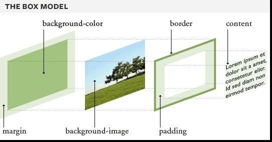 CSS盒模型 CSS Web  第2张